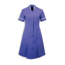 Mandarin Collar Dress (Purple with White Trim) - NF51