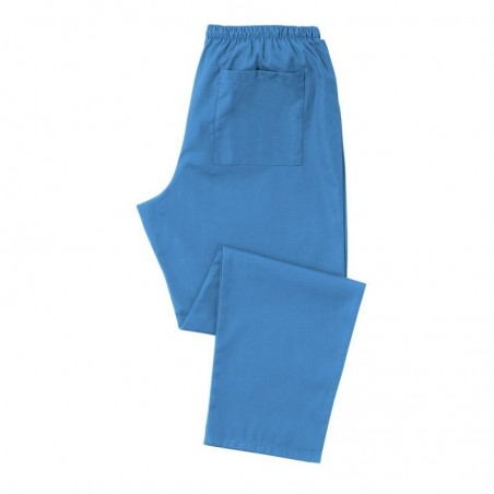 Scrub Trousers (Hospital Blue) - D398