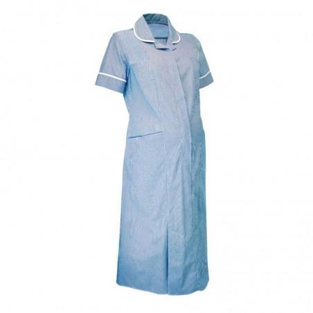 Maternity Stripe Dress (Blue With White Trim) - NF56